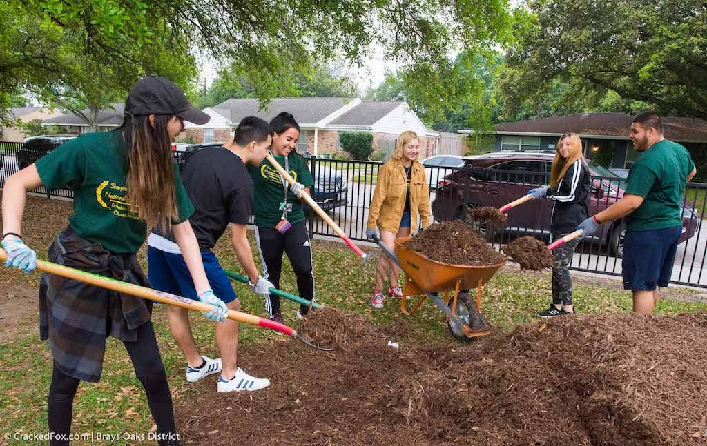 bomd-2019-westbury-park-clean-up-4053