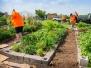 ECLA at Westbury Community Garden