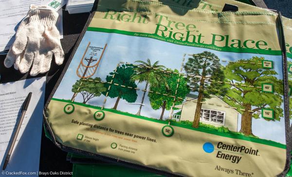 BOMD-2016-plant-a-tree-0584