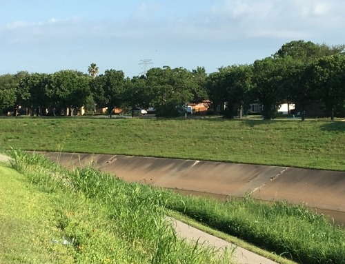 Brays Bayou Association Meeting, June 17