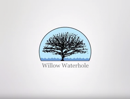 Video: 2019 Willow Waterhole MusicFest