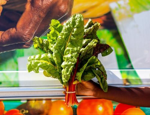Farm Share: Plant It Forward