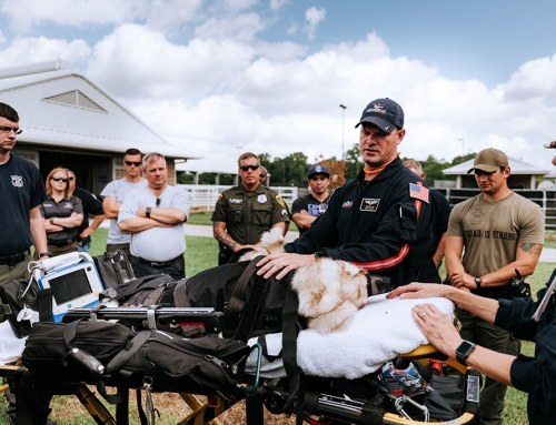 New Life Flight service for police dogs is rooted in Brays Oaks